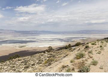OWENS, secos, lago, solitário, pinho,...