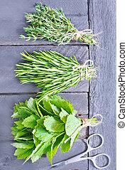 aroma herbs