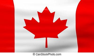 Waving Canada Flag, loop ready - Waving Canada Flag, ready...