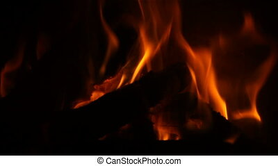 Flames - Burning fire close up view