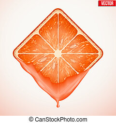 Square slice of grapefruit with fresh juice. Vector Illustration.