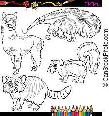 Zwierzęta, Kolorowanie, komplet, rysunek, książka