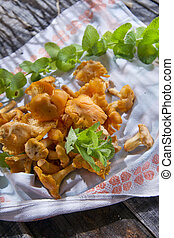 Chanterelle Mushroom - Product Of The Undergrowth Of The...