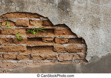 Green bamboo growing from crack of stone wall in garden