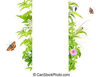Summer frame with green leaves, flowers and insects....