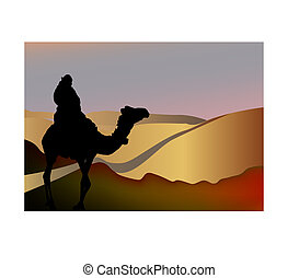 man on a camel in the desert