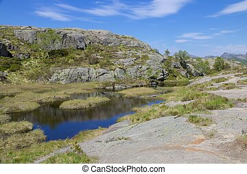 Preikestolen swampland 04 - Hiking trail and alpine...