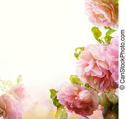 abstract Beautiful pink rose floral border background -...