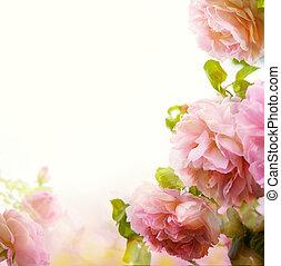 abstratos, bonito, Cor-de-rosa, rosÈ, floral, borda,...