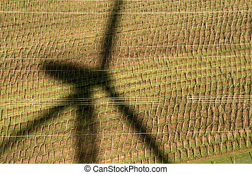 Shadow of a windmill on a archard