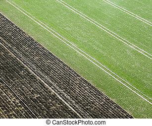 Aerial Pictrue of agriculture