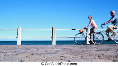 Active seniors going on a bike ride by the sea on a sunny...