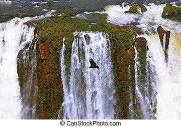 The grand Iguazu Falls on the Brazilian side Multi-tiered...