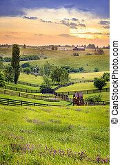 rural,  Kentucky
