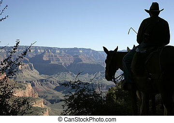 Mule rider - Silhouette of a mule rider about to descend...
