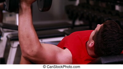 Fit man lifting dumbbells lying on the bench at the gym