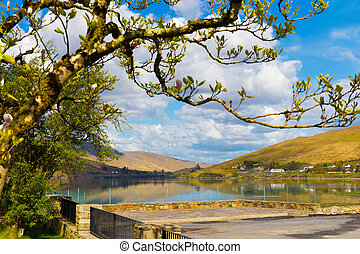 Magnolia tree with a backdrop of a lake and mountains