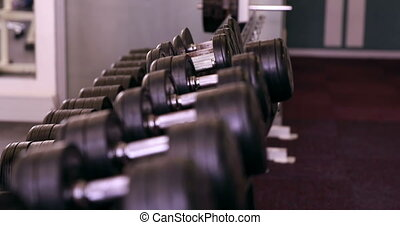Rack of heavy black dumbbells at the gym