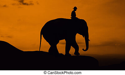 Elephant at mountain