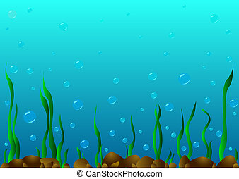 The seabed. - On the seabed there are stones , algae grow...