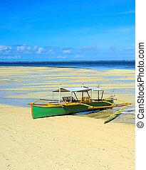 Boat in Low tide