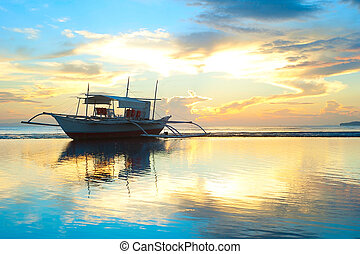 Philippines boat - Tropical landscape with traditional...
