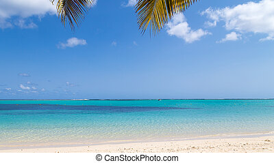 Ocean View - ocean view with clear water and white sand on...