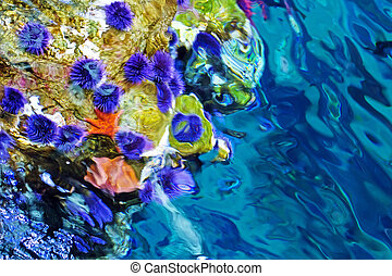 abstract under water background