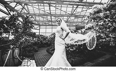 Sexy bride with long veil standing at orangery - Black and...