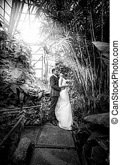 Just married couple walking under bamboos at jungle