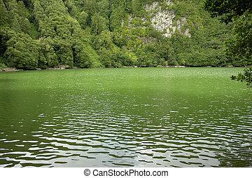 lake - azores green lake at s miguel island...