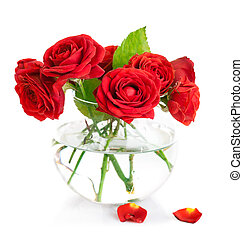 Bunch red roses in glass vase. Isolated on white background