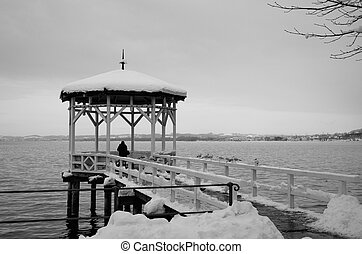 Summerhouse on the lake Bodensee - The pavilion is covered...