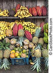 cacao, fruta, rodeado, por, otro, tropical, frutas, en, el,...
