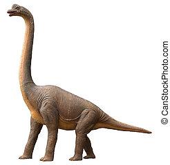 Sauropod dinosaur - Life-like sauropod dinosaur which was a...