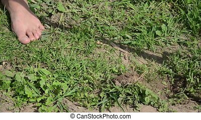 girl hoe grub weeds - Closeup of barefoot female farmer in...