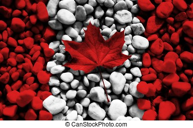 canada flag leaves stones