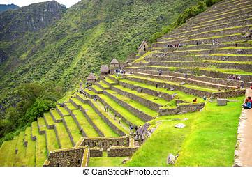 inca, ciudad, machu, Picchu, (Peru)