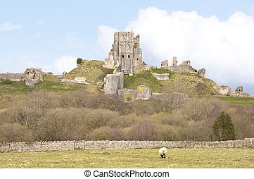 Corfe castle - Ruins of Corfe castle in Dorset, England
