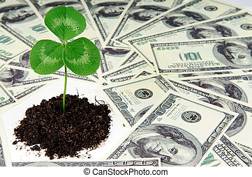 growing money - young plant and dollars - growing money...