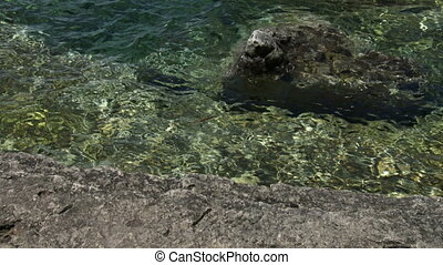 Clear blue water of Georgian bay, Canada