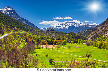 Sunny morning in alpine meadows. Alps, France.
