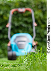 freshly cut grass - Freshly cut grass by blue lawnmower