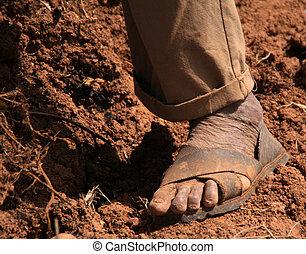 Farmer in Peru