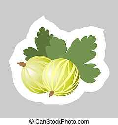 Vector Gooseberry Icon - Vector Gooseberry with White...