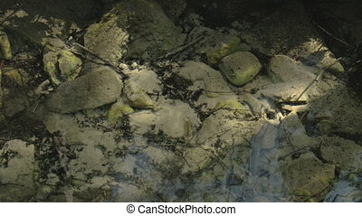 White stones underneath the water - White stones underneath...