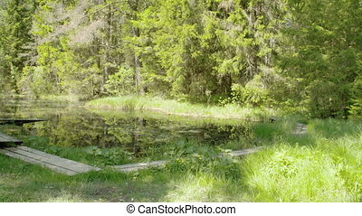Landscape view of the spring water - The beautiful landscape...
