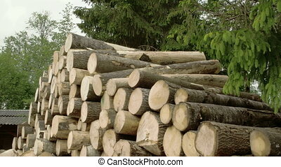Heap of piled logs - Heap of piled big logs created from...