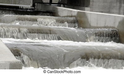 Water rushing from a fish ladder