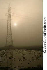 Stream Mast in the fog - trees in the fog on a field in the...
